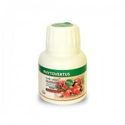 Thé Vert Guarana Brûle-graisse, Boite de 60 gélules - Phytovertus