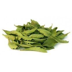 Feuilles entières de Stevia Séchées, 20g - Bio Gatrana