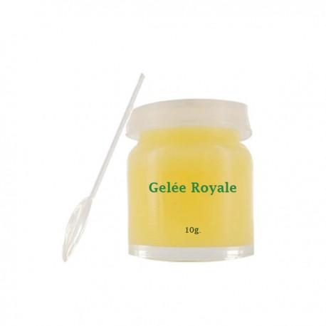 Gelée Royale pure 10g - Vivez Nature
