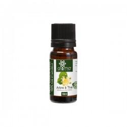 Huile Essentielle de Tea Tree (Arbre à Thé), 10ml - Aroma Végétal