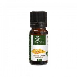 Huile Essentielle d'Encens (Oliban), 10ml - Aroma Végétal