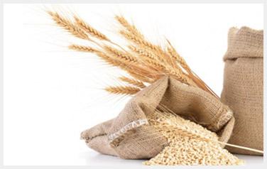 cereales-bio
