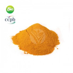 Curcuma BIO, 100g - Elixir Bio