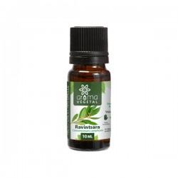 Huile essentielle de ravintsara, flacon 10ml Aroma Végétal